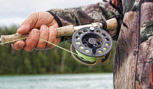Man Holding Fishing Pole