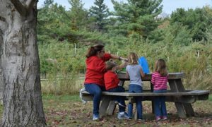 Family Eating Lunch at Picnic Table