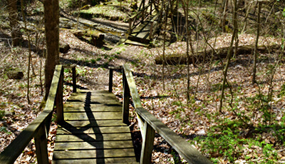 Swine Creek Reservation Trails