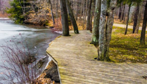 Headwaters Park Trails